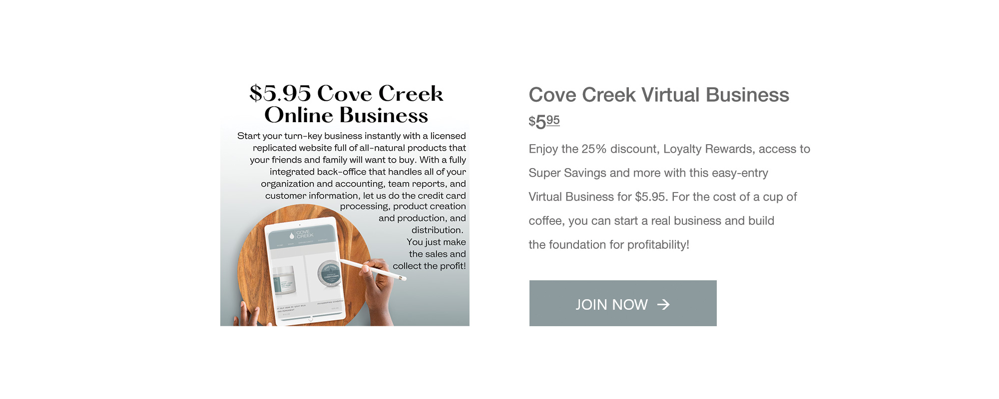 $5.95 Virtual Business Enrollment